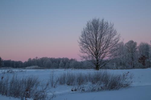 Wintermorgen-03