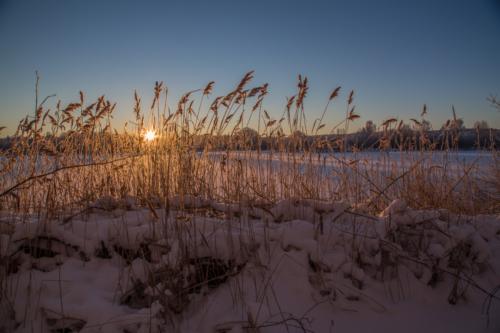 Wintermorgen-11